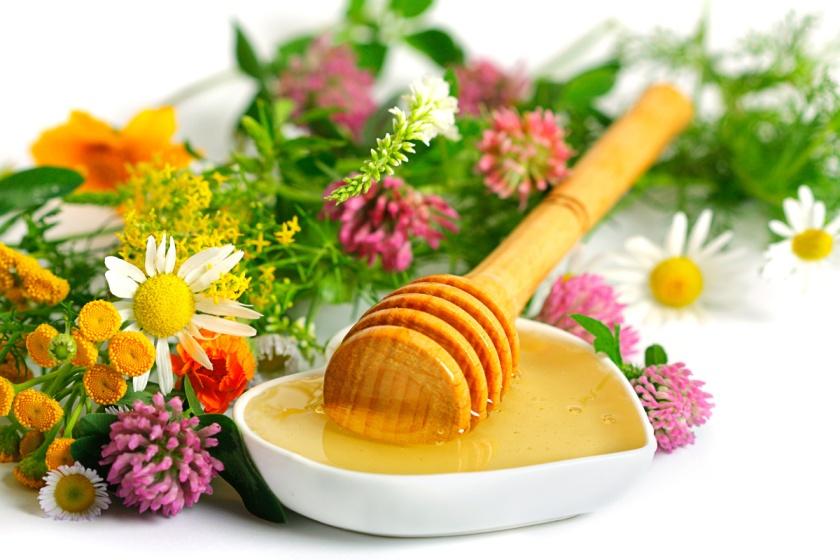 wildflower-honey-1[1]